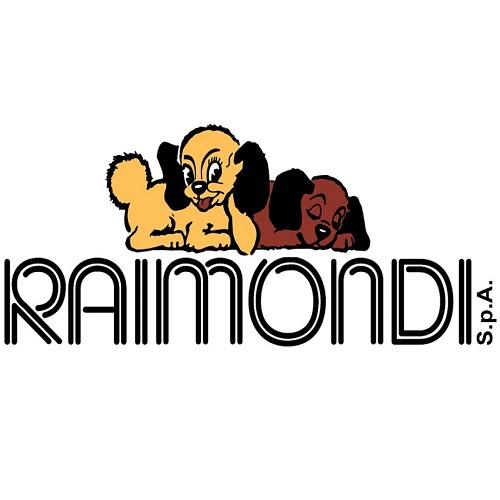 RAIMONDI Nivelleer systeem